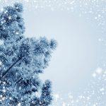 Пословицы про декабрь