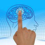 Пословицы про ум и умных людей