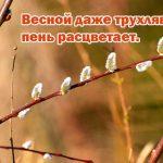 Пословицы про весну и весенние месяцы