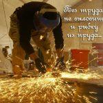 Смысл пословицы «Без труда не выловишь и рыбку из пруда»