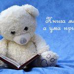 Пословицы о пользе чтения книг