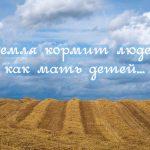 Пословицы про землю