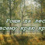 Пословицы о лесе, лесных богатствах